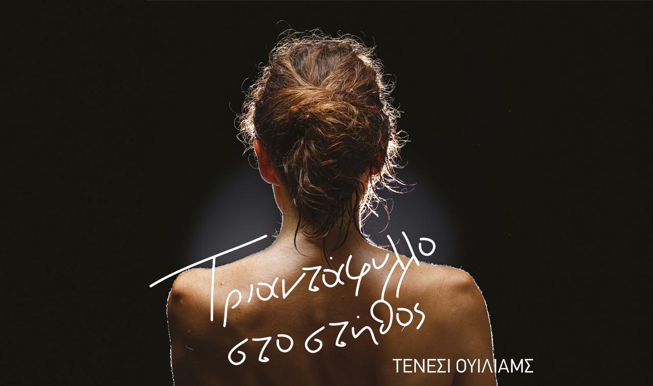triantafyllo_sto_stithos_cover_dipethe_kozanis